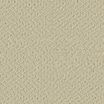 Cotton White - SN500