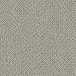 Starlight Grey - SN503