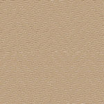 Lichen - G3124