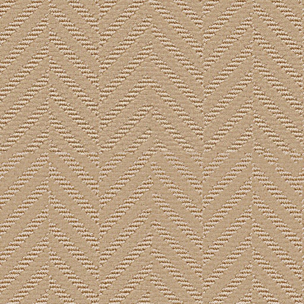 Lichen – G3124